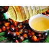 Palm oil and cooking oils