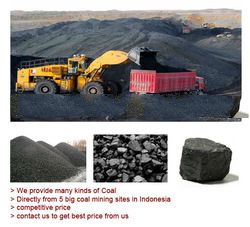 Steam Coal From Kalimantan