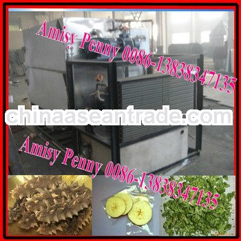 0132 stainless steel vegetable freeze dryer/fruit vacuum freeze drying eequipment for sale/0086-1383