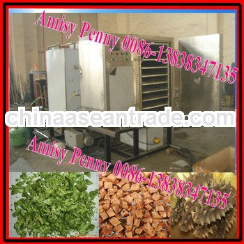 304 commercial vacuum freeze type meat drying machie/freeze meat dryer for chicken,beef,pork/0086-13