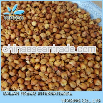 chinese organic sorghum for sale-9